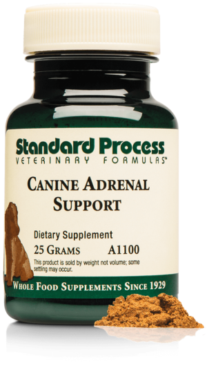 A1100 Canine Adrenal Support Bottle Powder