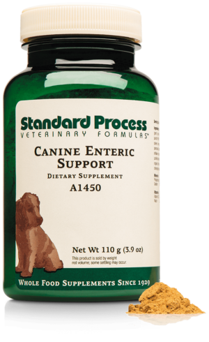 A1450 Canine Enteric Support Bottle Powder