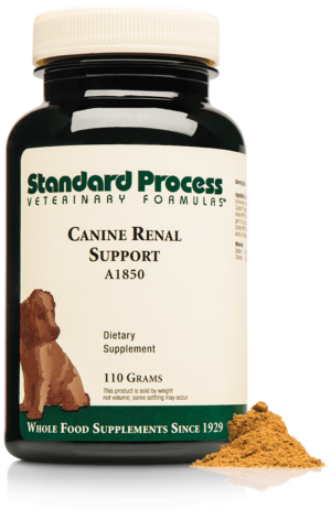 A1850 Canine Renal Support Bottle Powder