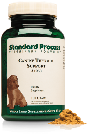 A1950 Canine Thyroid Support Bottle Powder